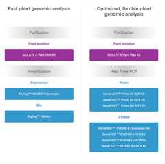 Plant Genomic Research Workflow